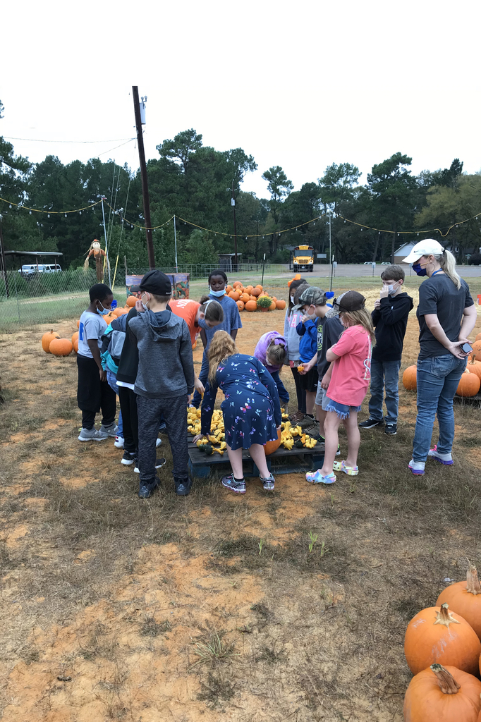 Working together for pumpkin fun!