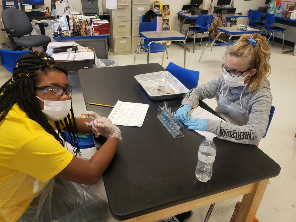 6th Grade students enjoying Science